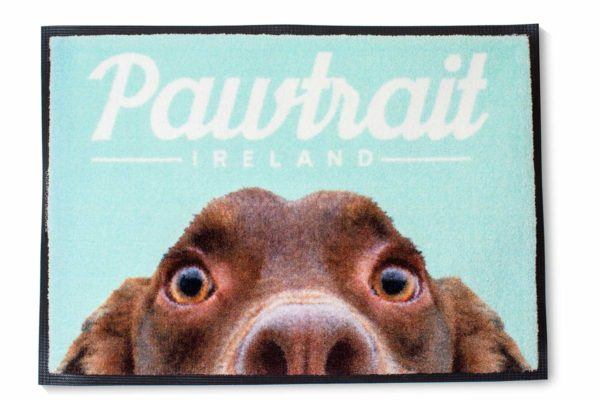 Dog mats for pet lovers
